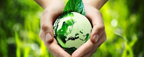 Sei sensibile al concetto di turismo ecosostenibile.